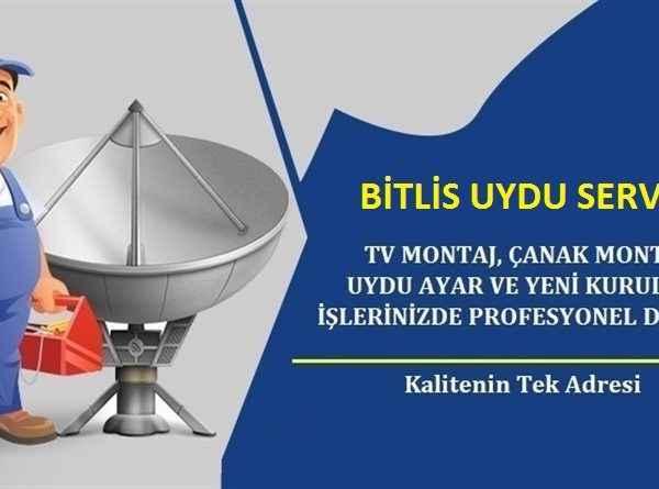 Bitlis Uydu Servisi